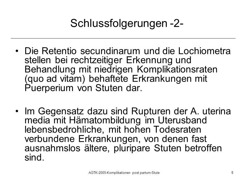 Schlussfolgerungen -2-