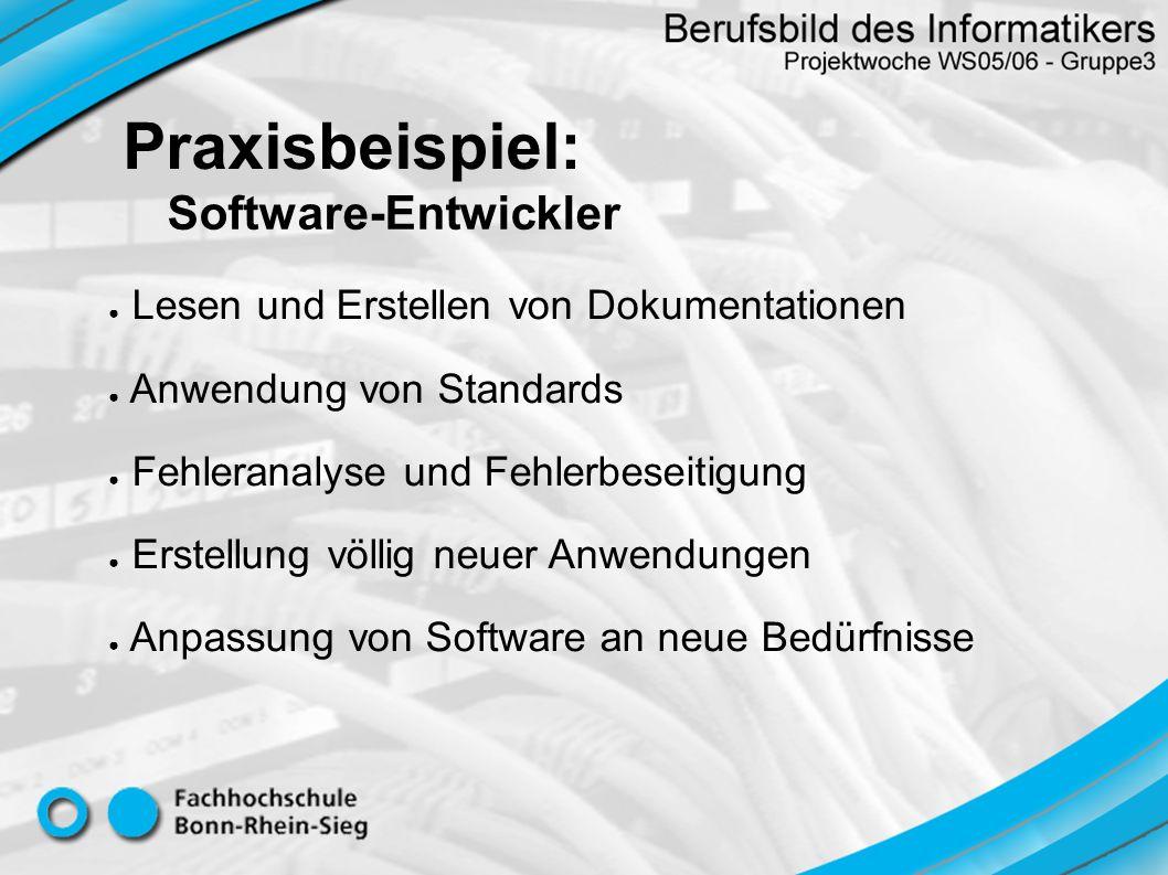 Praxisbeispiel: Software-Entwickler