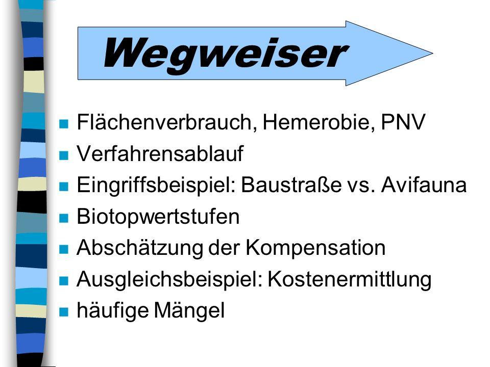 Wegweiser Flächenverbrauch, Hemerobie, PNV Verfahrensablauf