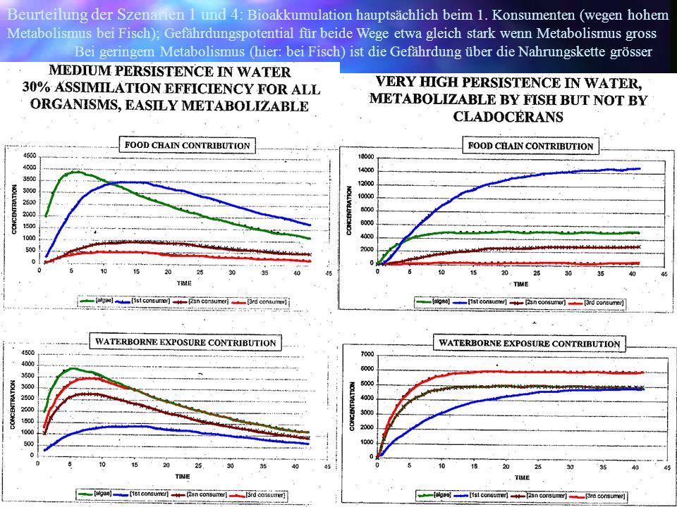Beurteilung der Szenarien 1 und 4: Bioakkumulation hauptsächlich beim 1. Konsumenten (wegen hohem Metabolismus bei Fisch); Gefährdungspotential für beide Wege etwa gleich stark wenn Metabolismus gross