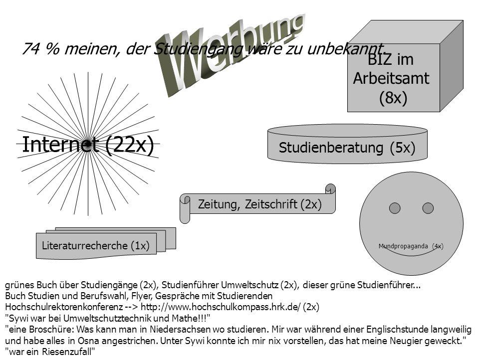 Werbung Internet (22x) BIZ im