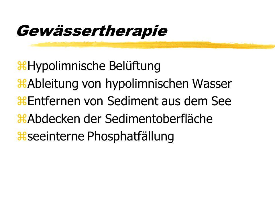 Gewässertherapie Hypolimnische Belüftung