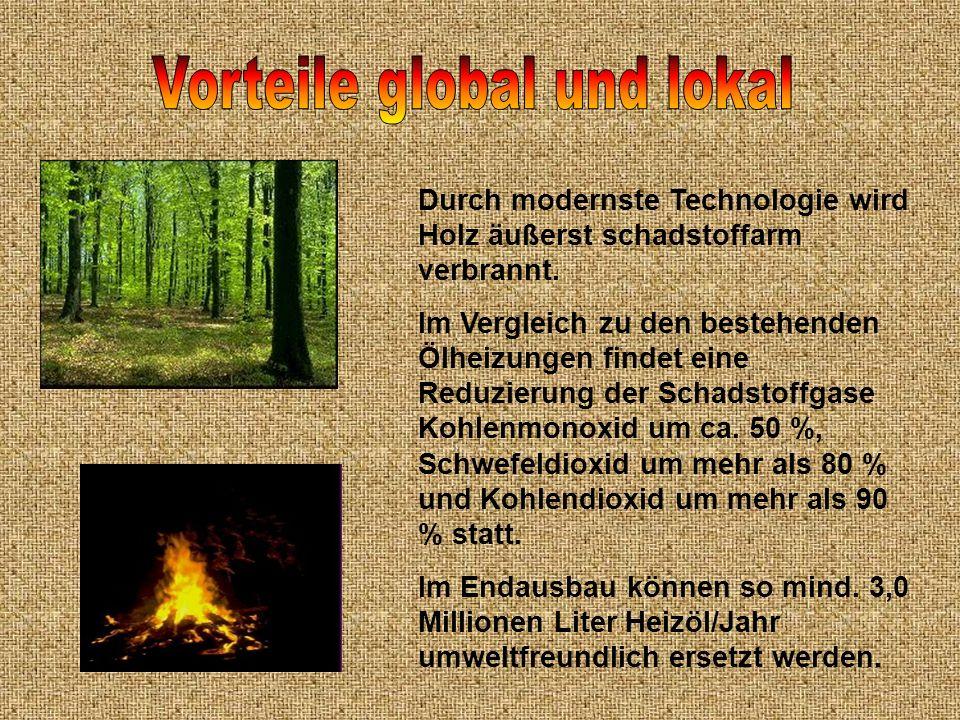 Vorteile global und lokal