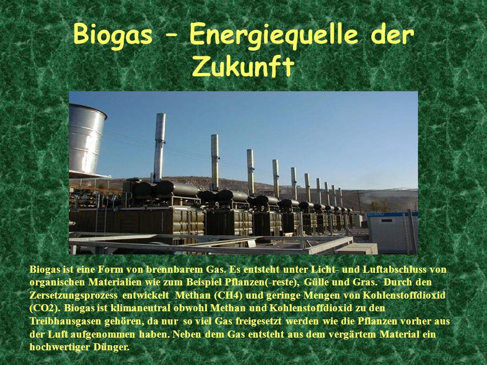 Biogas – Energiequelle der Zukunft