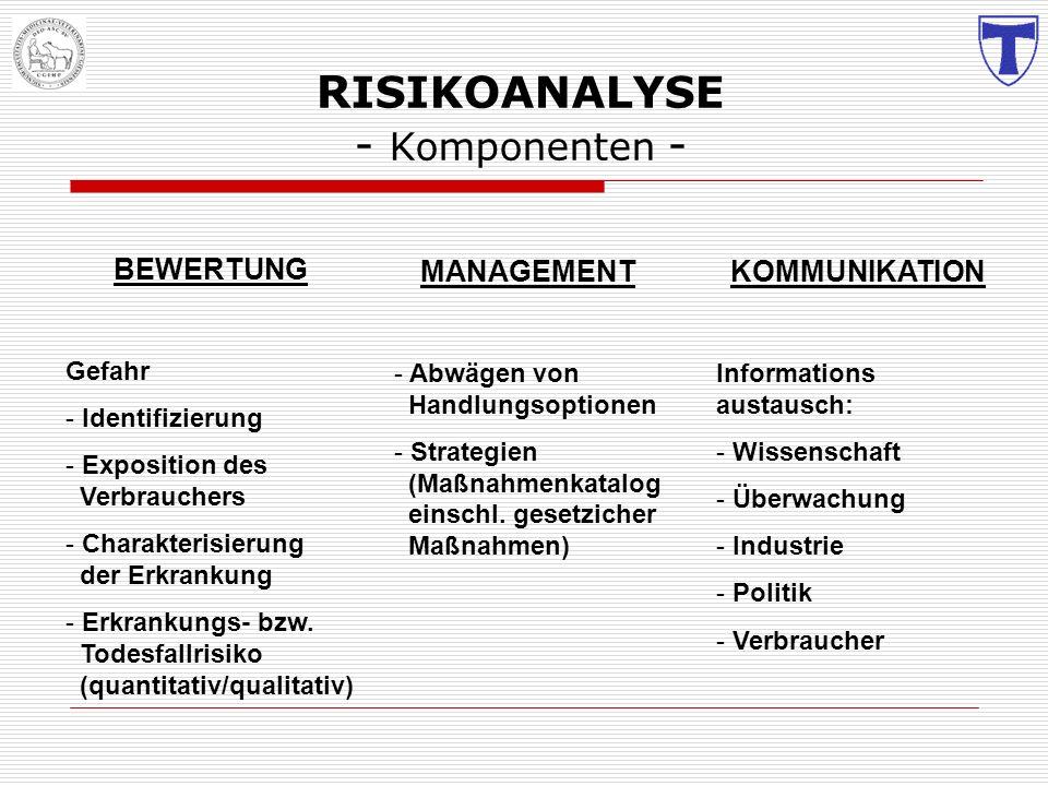 RISIKOANALYSE - Komponenten -