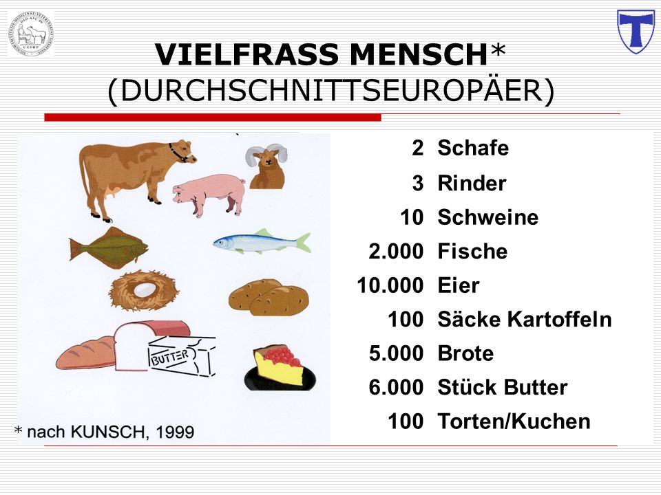 VIELFRASS MENSCH* (DURCHSCHNITTSEUROPÄER)