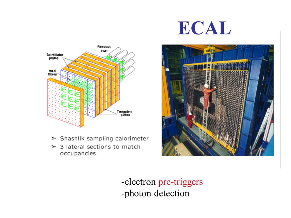 ECAL electron pre-triggers photon detection