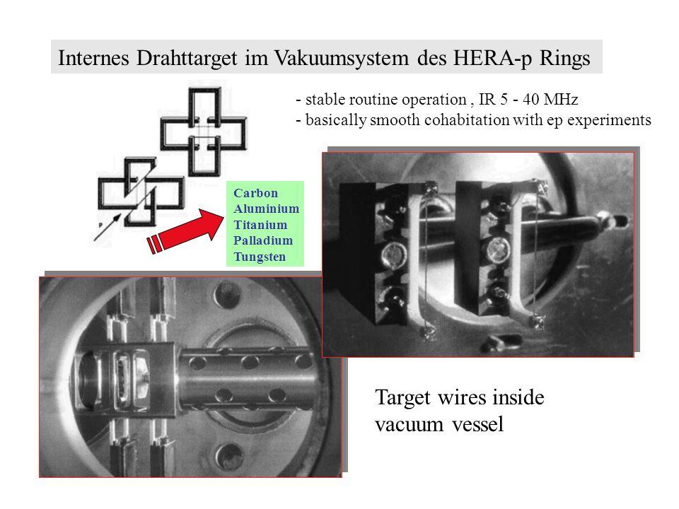 Internes Drahttarget im Vakuumsystem des HERA-p Rings