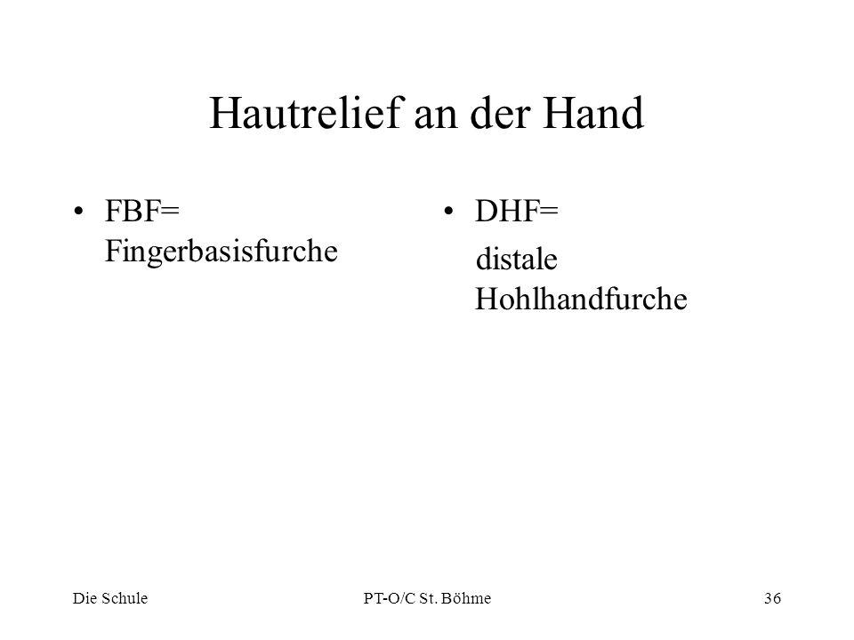 Hautrelief an der Hand FBF= Fingerbasisfurche DHF=