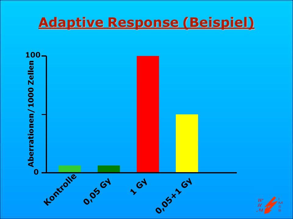 Adaptive Response (Beispiel)