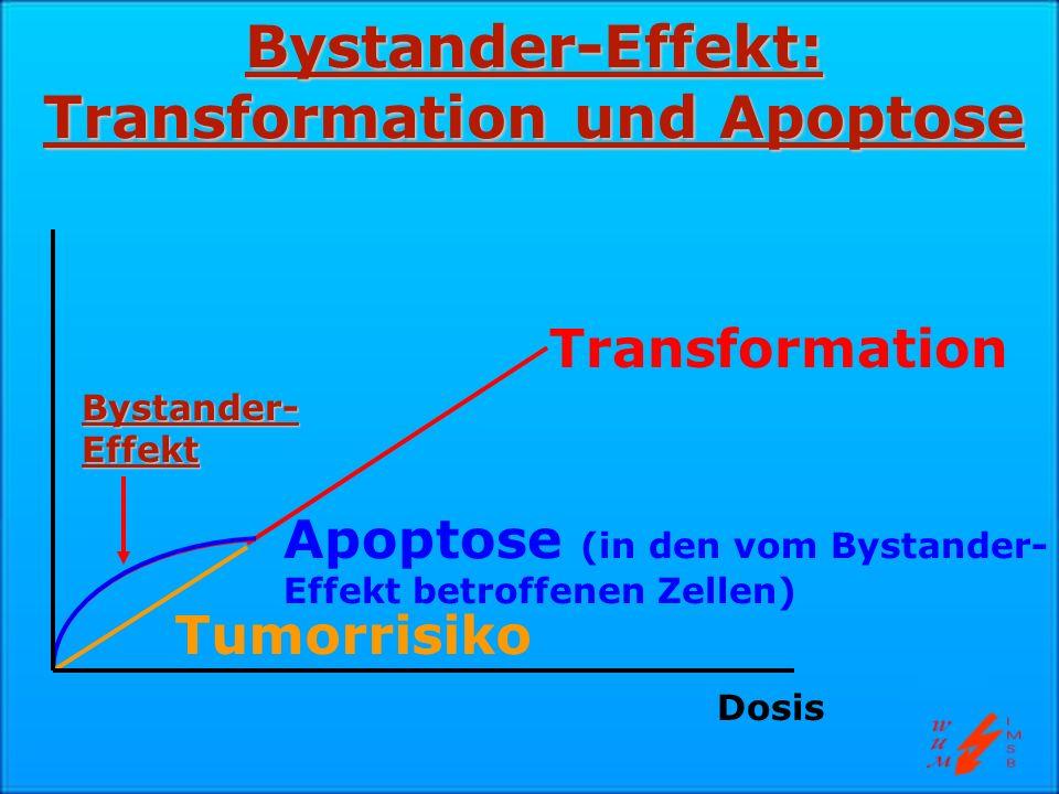 Bystander-Effekt: Transformation und Apoptose
