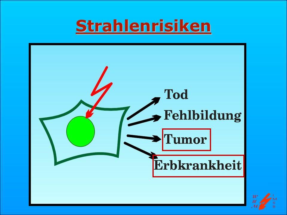 Strahlenrisiken Schwerpunkte: Zelltod und Tumorentstehung