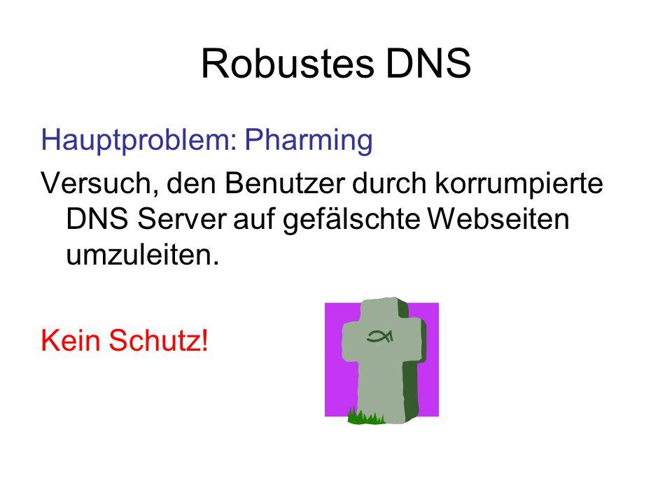 Robustes DNS Hauptproblem: Pharming
