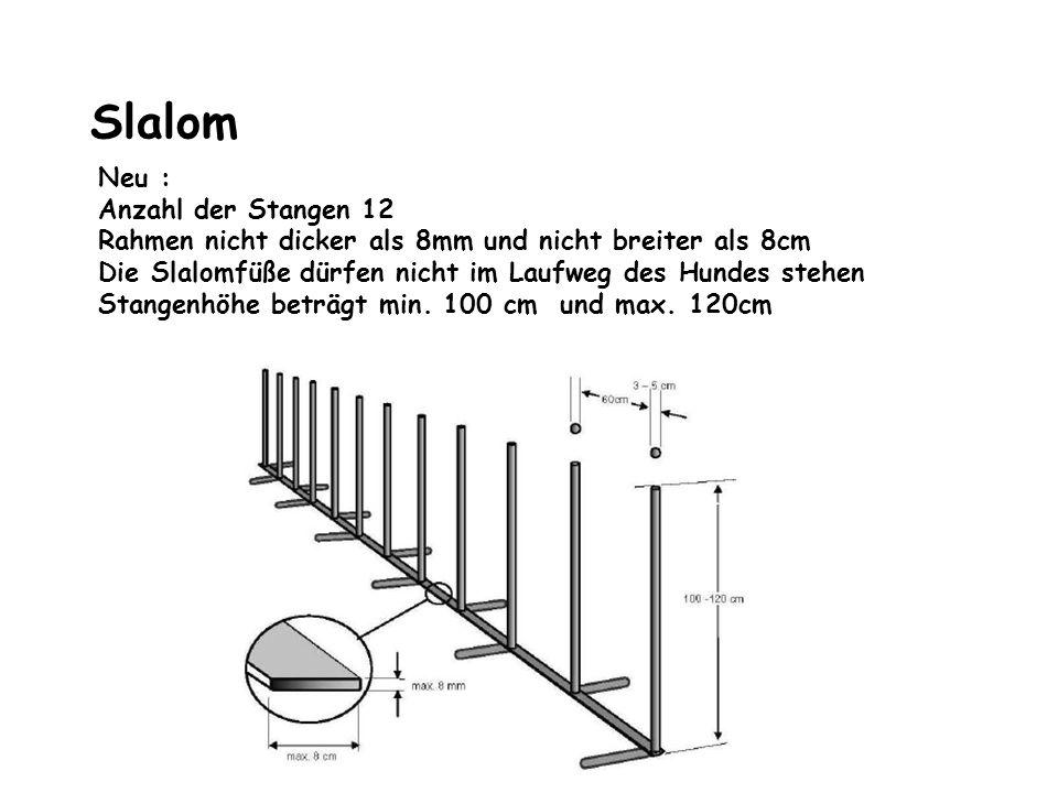 Slalom Neu : Anzahl der Stangen 12