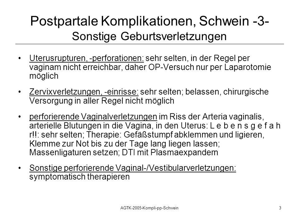Postpartale Komplikationen, Schwein -3- Sonstige Geburtsverletzungen