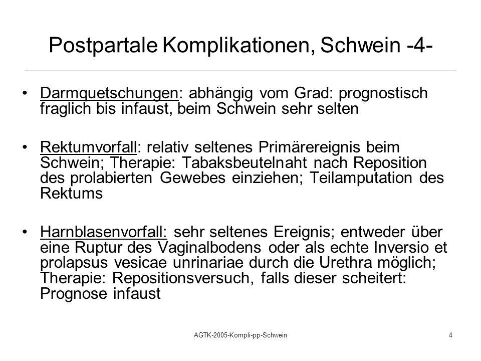 Postpartale Komplikationen, Schwein -4-