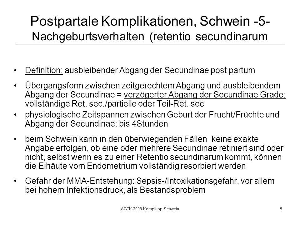 AGTK-2005-Kompli-pp-Schwein