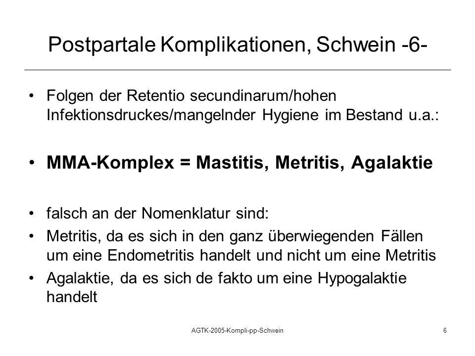 Postpartale Komplikationen, Schwein -6-