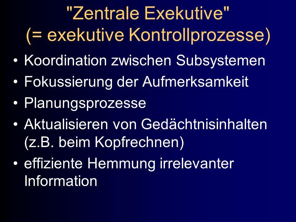 Zentrale Exekutive (= exekutive Kontrollprozesse)