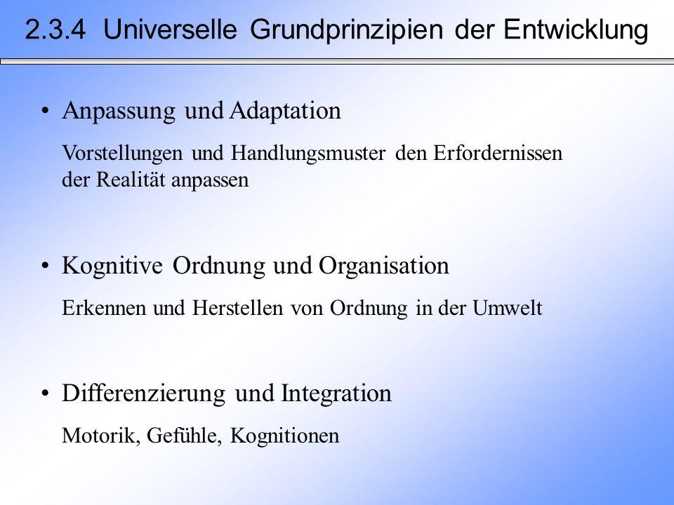 2.3.4 Universelle Grundprinzipien der Entwicklung