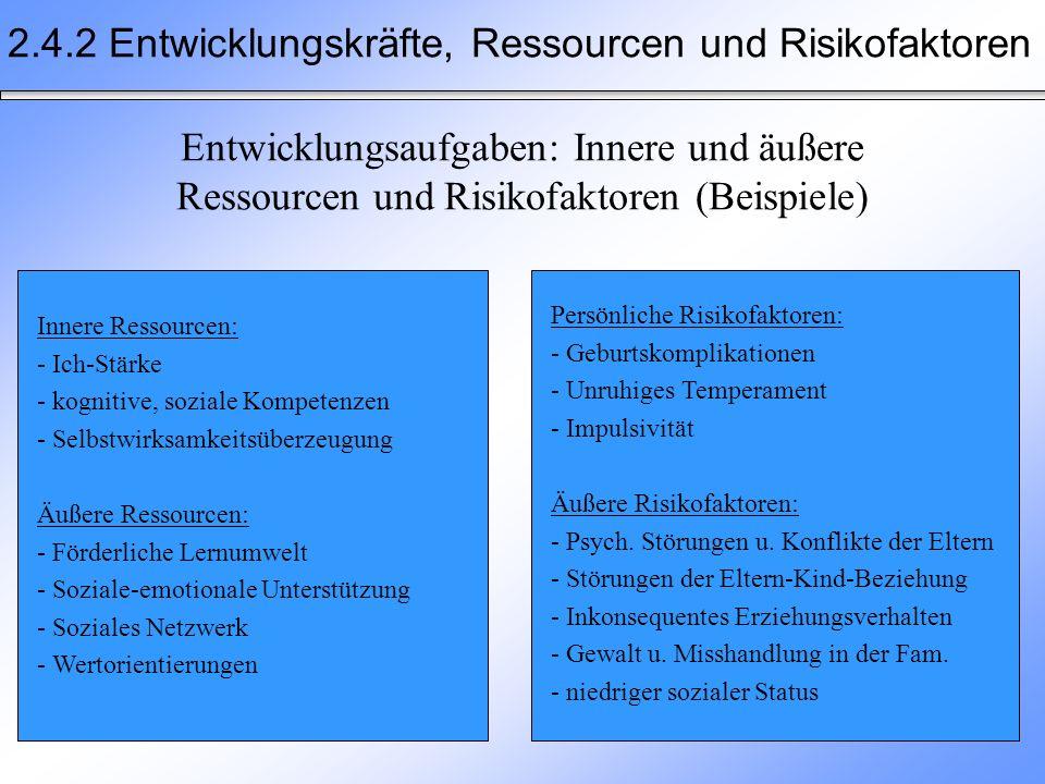 2.4.2 Entwicklungskräfte, Ressourcen und Risikofaktoren