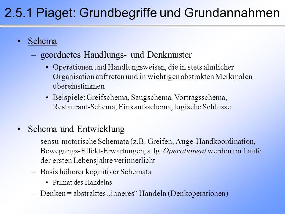 2.5.1 Piaget: Grundbegriffe und Grundannahmen