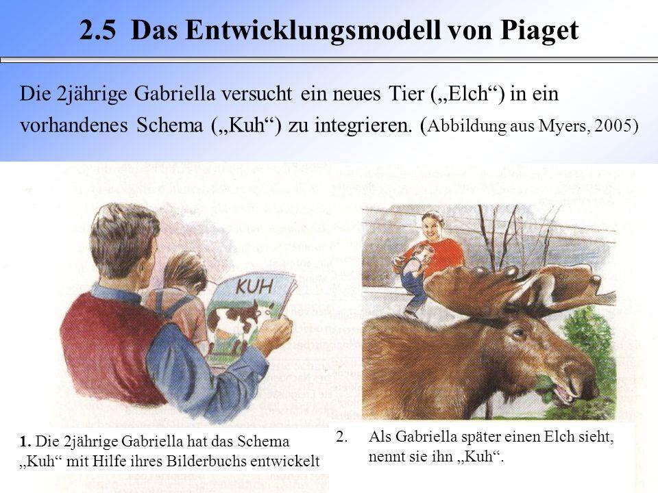 2.5 Das Entwicklungsmodell von Piaget