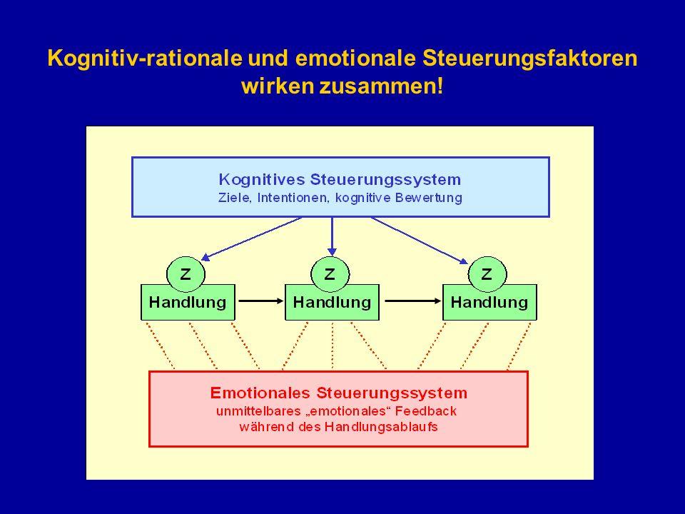 Kognitiv-rationale und emotionale Steuerungsfaktoren