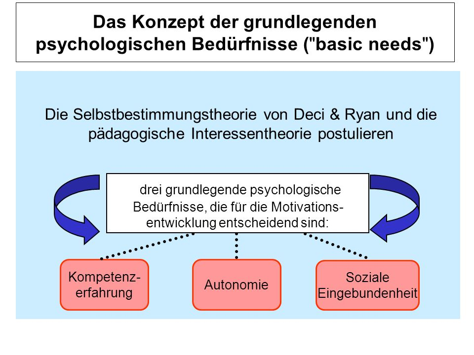 Das Konzept der grundlegenden psychologischen Bedürfnisse ( basic needs )