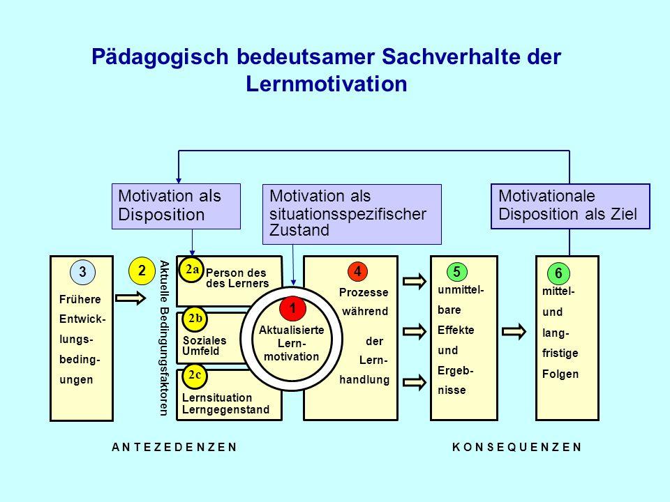 Pädagogisch bedeutsamer Sachverhalte der Lernmotivation