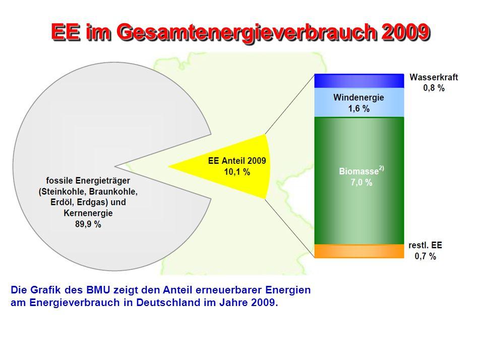 EE im Gesamtenergieverbrauch 2009