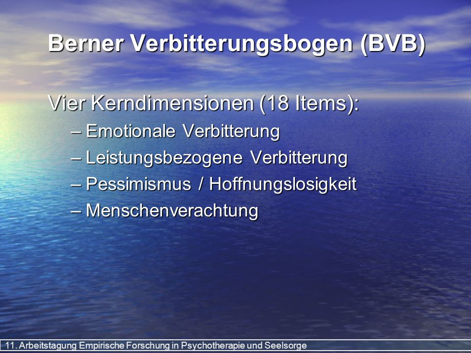 Berner Verbitterungsbogen (BVB)