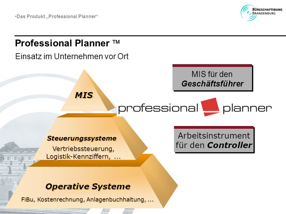 Professional Planner 