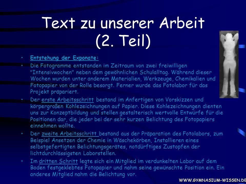 Text zu unserer Arbeit (2. Teil)