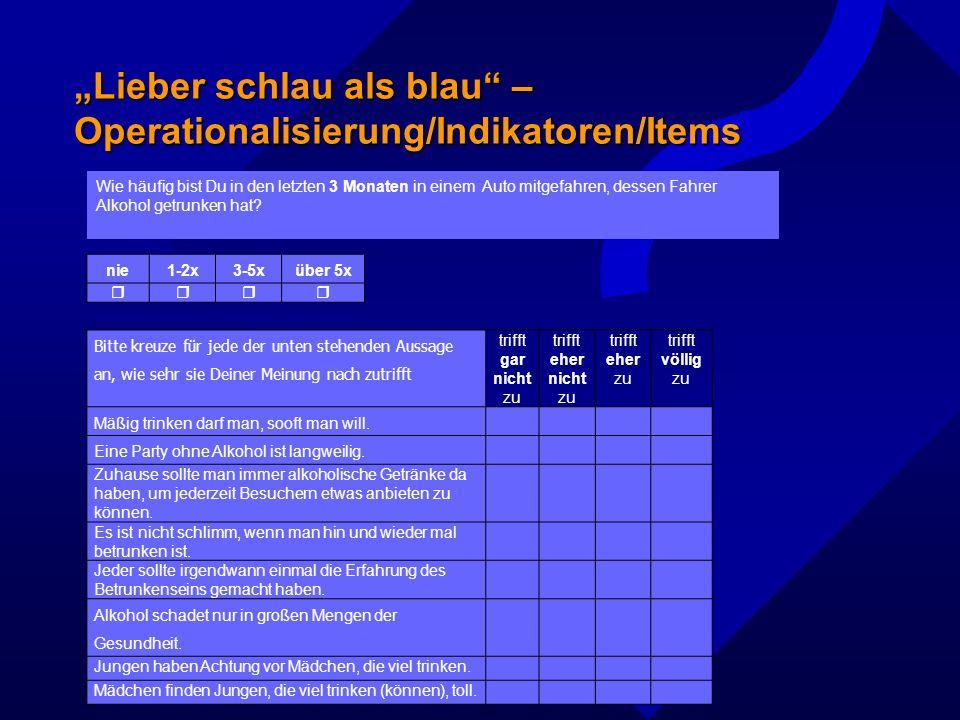 """""""Lieber schlau als blau – Operationalisierung/Indikatoren/Items"""