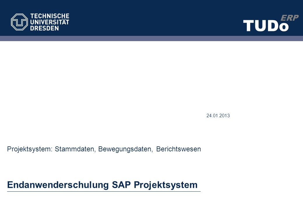 Endanwenderschulung SAP Projektsystem