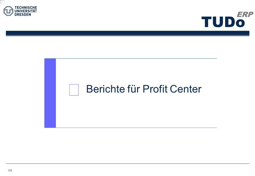  Berichte für Profit Center 105