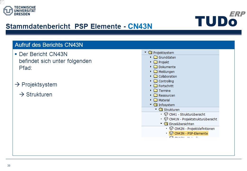 Stammdatenbericht PSP Elemente - CN43N