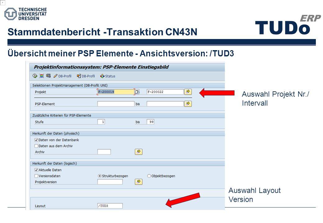 Stammdatenbericht -Transaktion CN43N