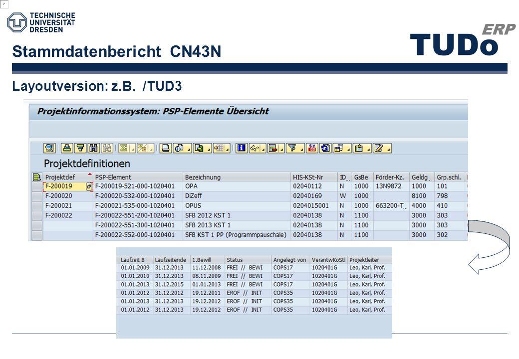 Stammdatenbericht CN43N