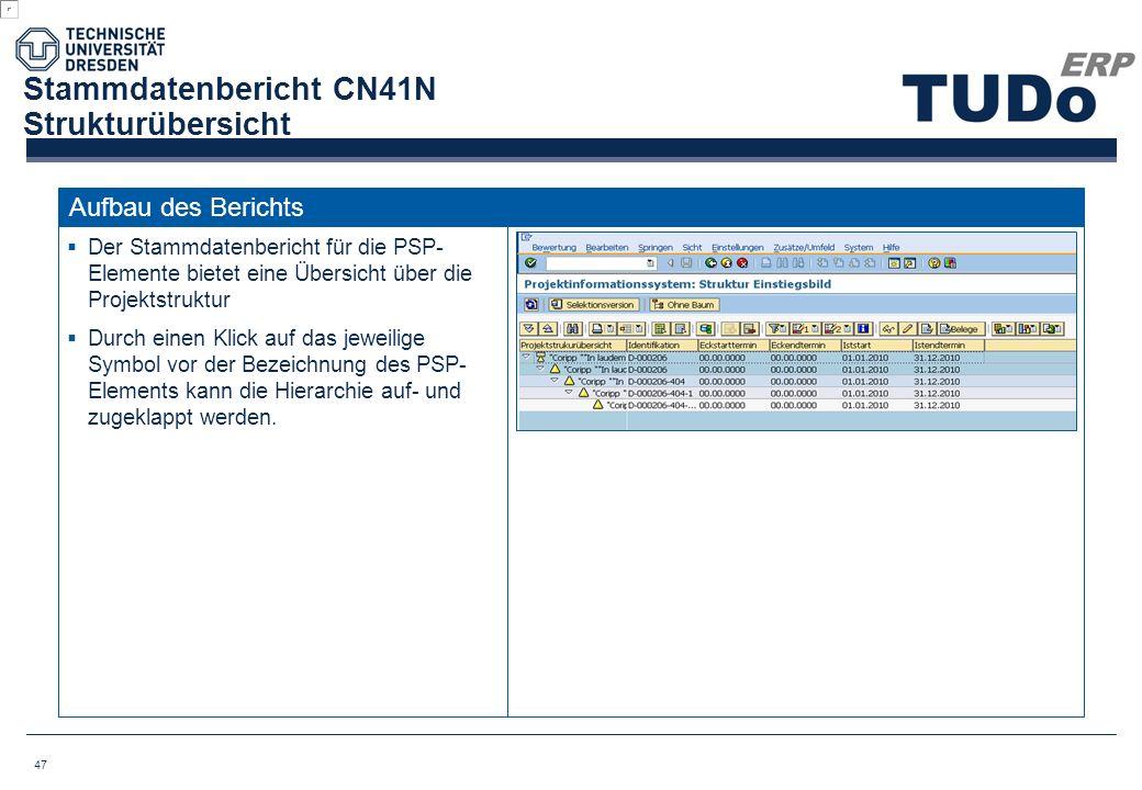 Stammdatenbericht CN41N Strukturübersicht