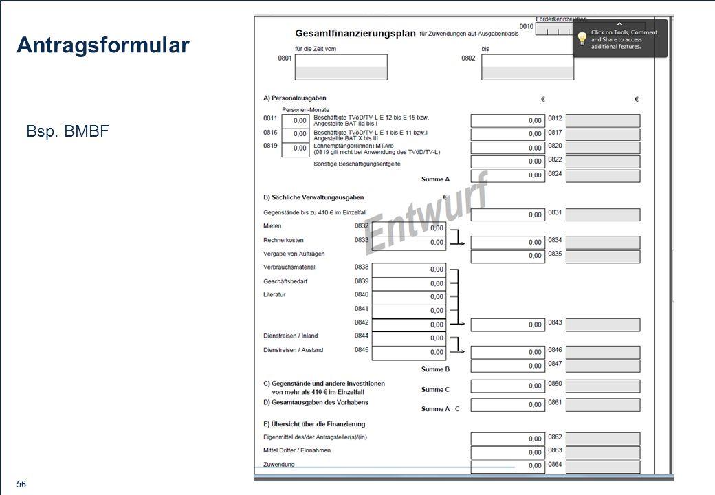Antragsformular Bsp. BMBF