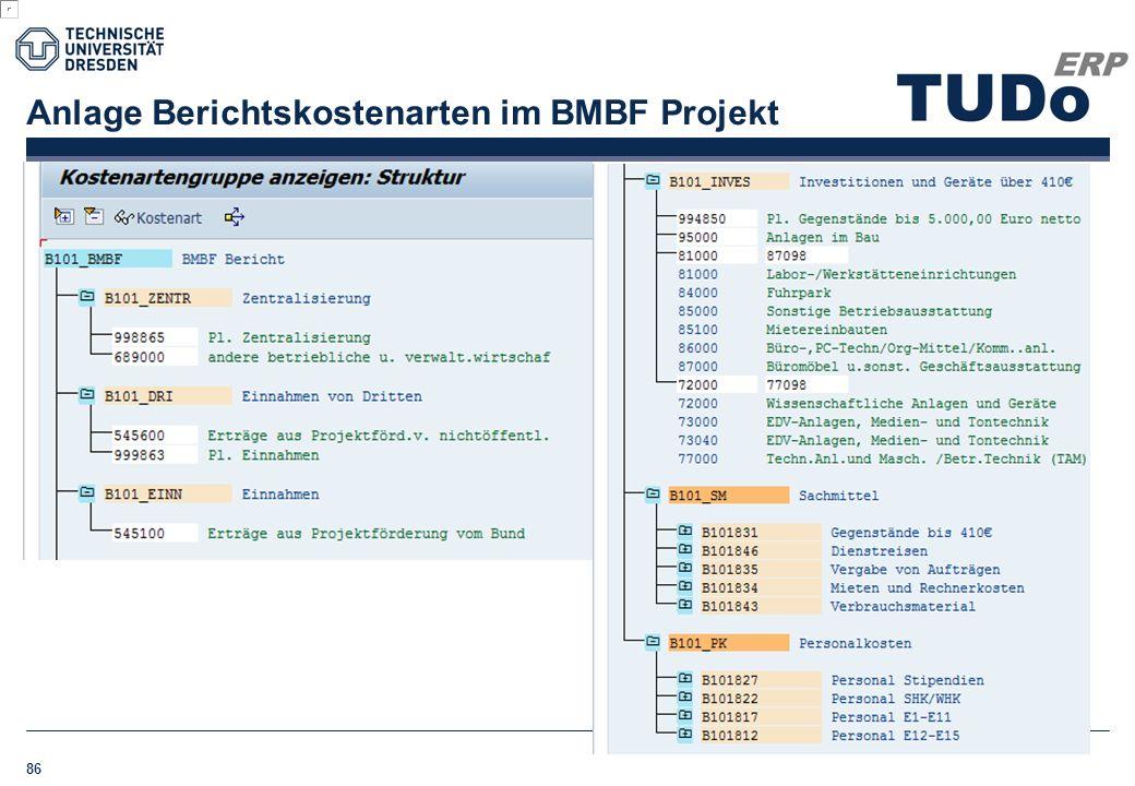 Anlage Berichtskostenarten im BMBF Projekt