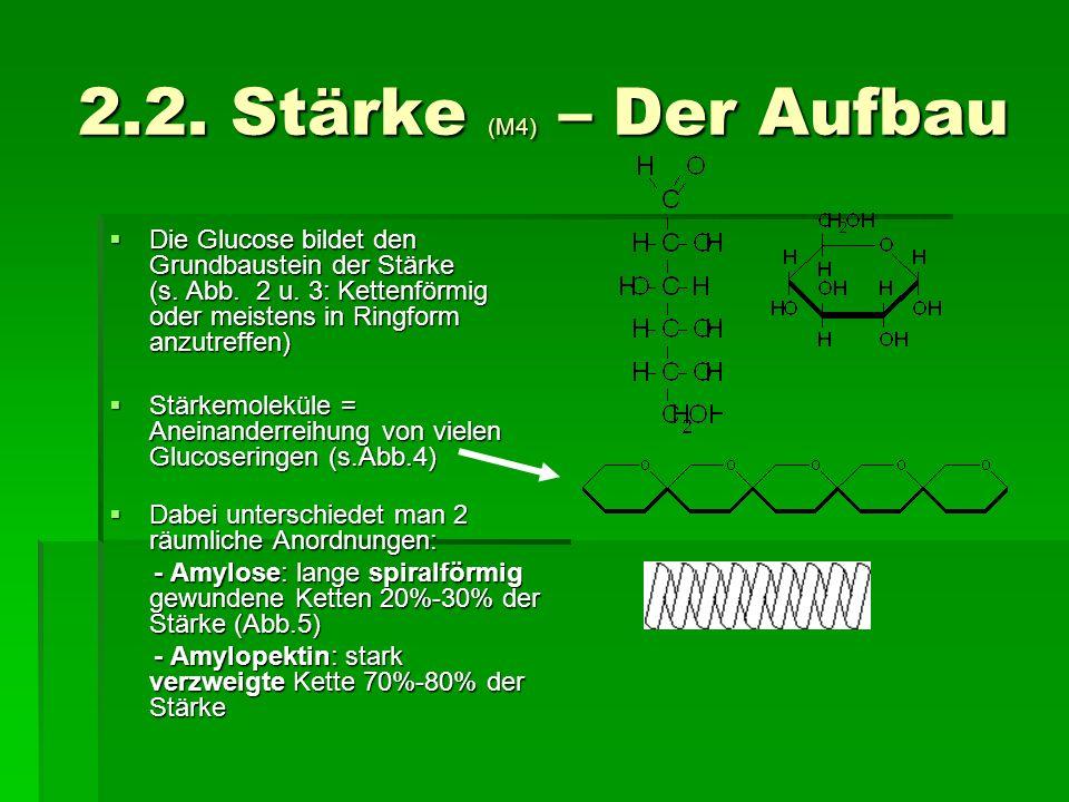 2.2. Stärke (M4) – Der Aufbau Die Glucose bildet den Grundbaustein der Stärke (s. Abb. 2 u. 3: Kettenförmig oder meistens in Ringform anzutreffen)