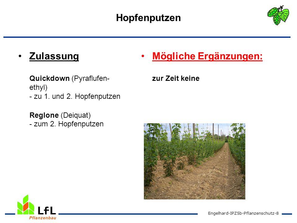 Hopfenputzen Zulassung Quickdown (Pyraflufen-ethyl) - zu 1. und 2. Hopfenputzen Reglone (Deiquat) - zum 2. Hopfenputzen.
