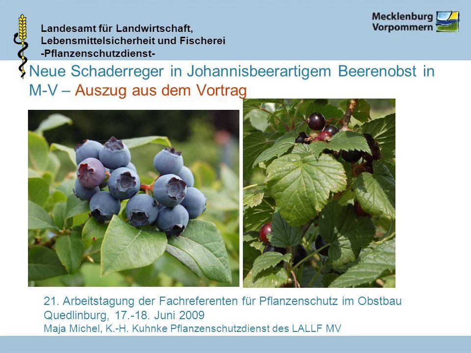 Neue Schaderreger in Johannisbeerartigem Beerenobst in M-V – Auszug aus dem Vortrag