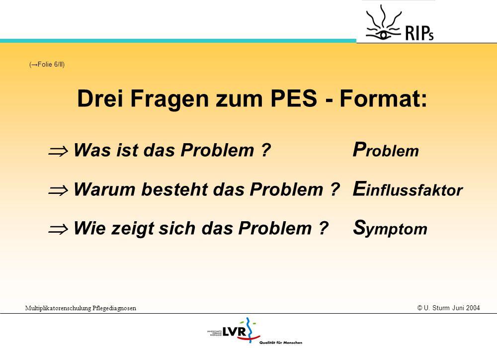 Drei Fragen zum PES - Format:
