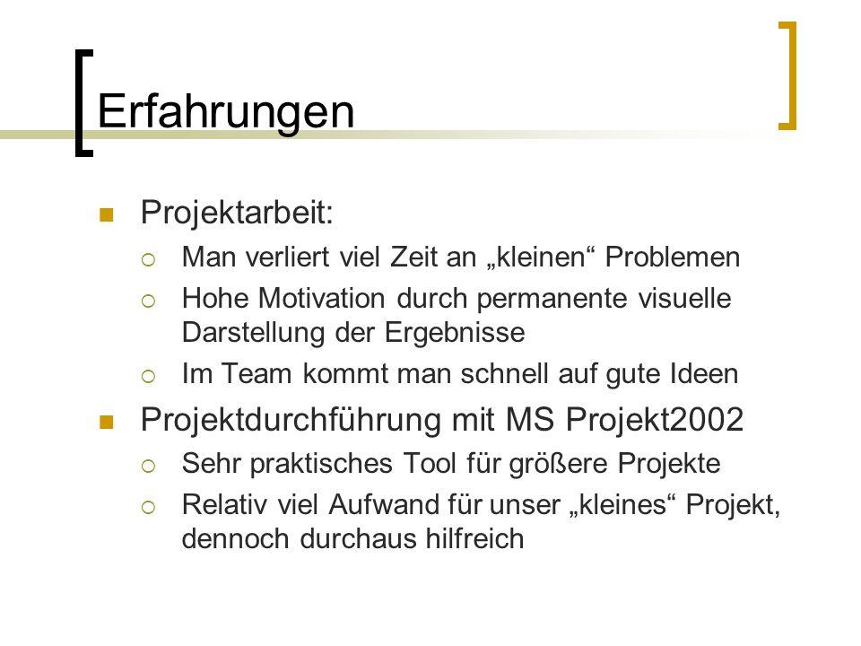Erfahrungen Projektarbeit: Projektdurchführung mit MS Projekt2002