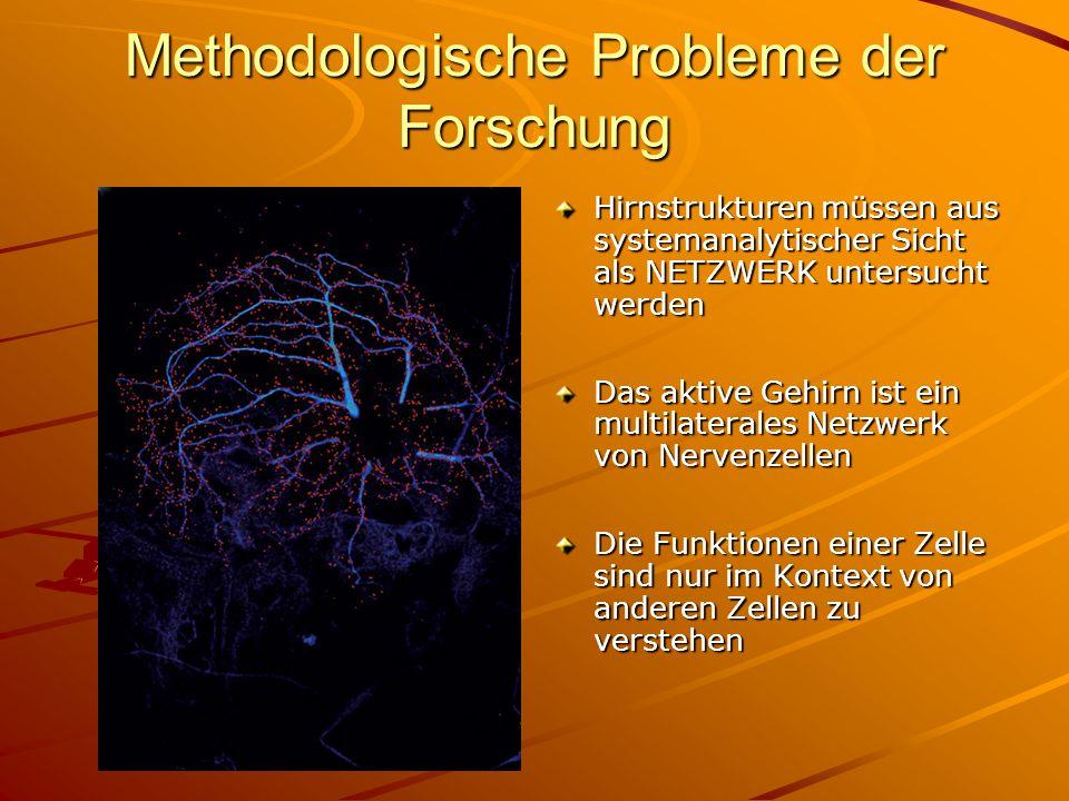 Methodologische Probleme der Forschung
