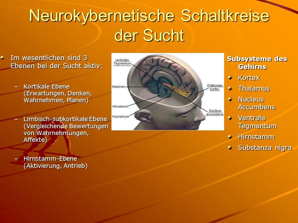 Neurokybernetische Schaltkreise der Sucht